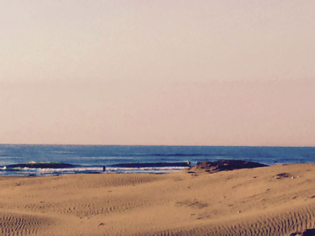 20140923 sea