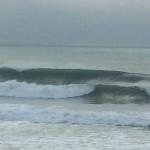 Typhoon Swell